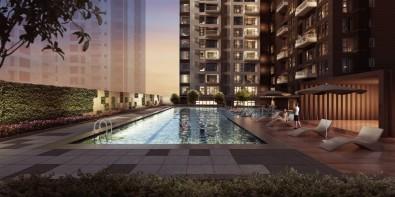 3724-callistomakatiswimming-pool1000w